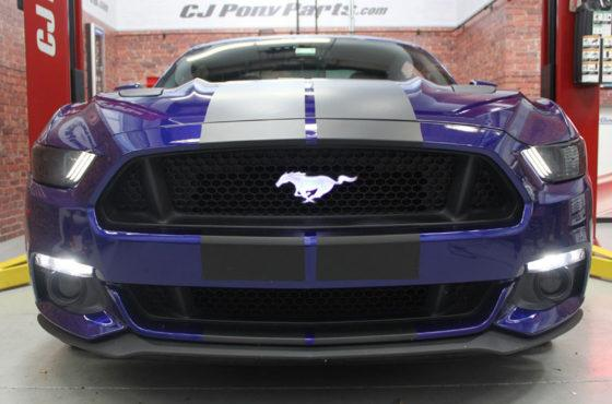 Illuminated Mustang Pony Badge, The HID Factory offers the most cutting edge products to give your vehicle a unique touch!